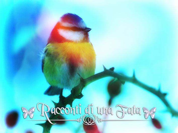 L'uccellino della speranza